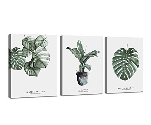 - Baisuart Wall Art Decor 3 Pieces Framed Canvas Prints Simple Life Green Leaf Painting Ready to Hang for Home Decoration
