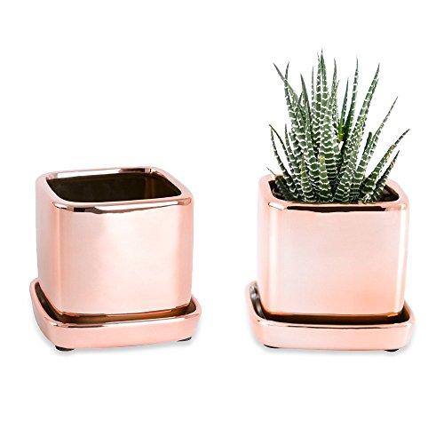 Mkono 2 Pack Modern Cactus Succulent Pot 3 1/2 Inch Ceramic