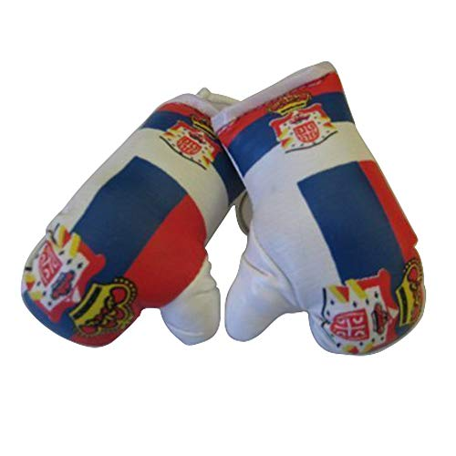Flag Mini Small Boxing Gloves to Hang Over Car Automobile Mirror - Americas (Country: USA)