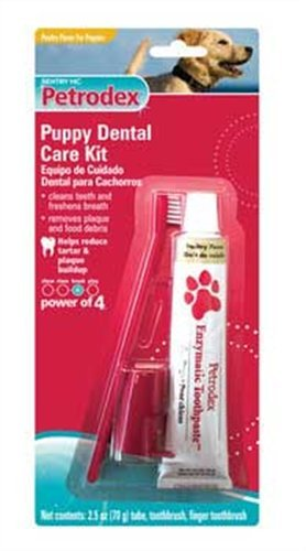 Petrodex Puppy Poultry Toothpaste Dental Care Kit, 2 Toothbrushes, My Pet Supplies