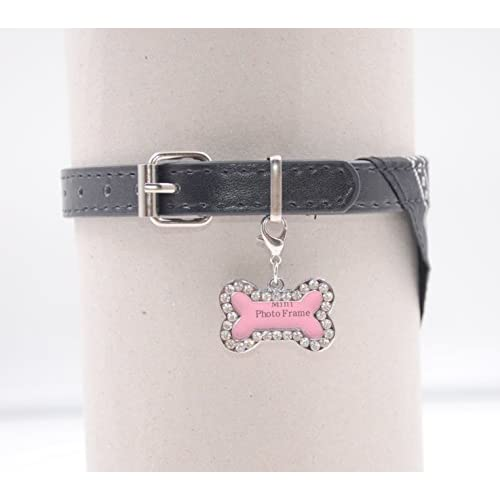 Colourful Puppy Collar Cute Flower Studded Leather Pet Dog Cat Buckle Neck Strap 1PC Or 3PCS Set well-wreapped