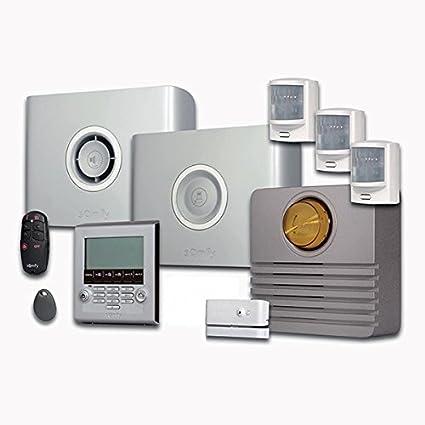 Somfy Protexiom 550 - Alarma con GSM: Amazon.es: Bricolaje y ...