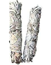 "Smudge Stick Fresh from California White Sage - Extra Large Jumbo 9"" (22cm)"