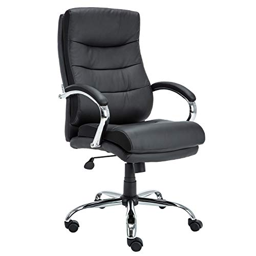 KADIRYA High Back Executive Office Chair, Double-Layer Leather Ergonomic Computer Task Chair, with Headrest Lumbar Support and Cushion, Curved Armrests Task Black PU Leather ()