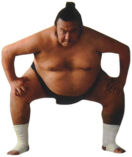 Paper House Productions M-0196E Die Cut Refrigerator Magnet, Sumo Wrestler (6-Pack)