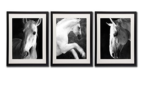 (White Horses Canvas Wall Art Prints 18x24 Black Frame White Mat Horse Portraits Decor Picture Posters Wild Animal Photo Paintings Printed On Canvas Office Decoration 3 Piece Close-Up Picture)