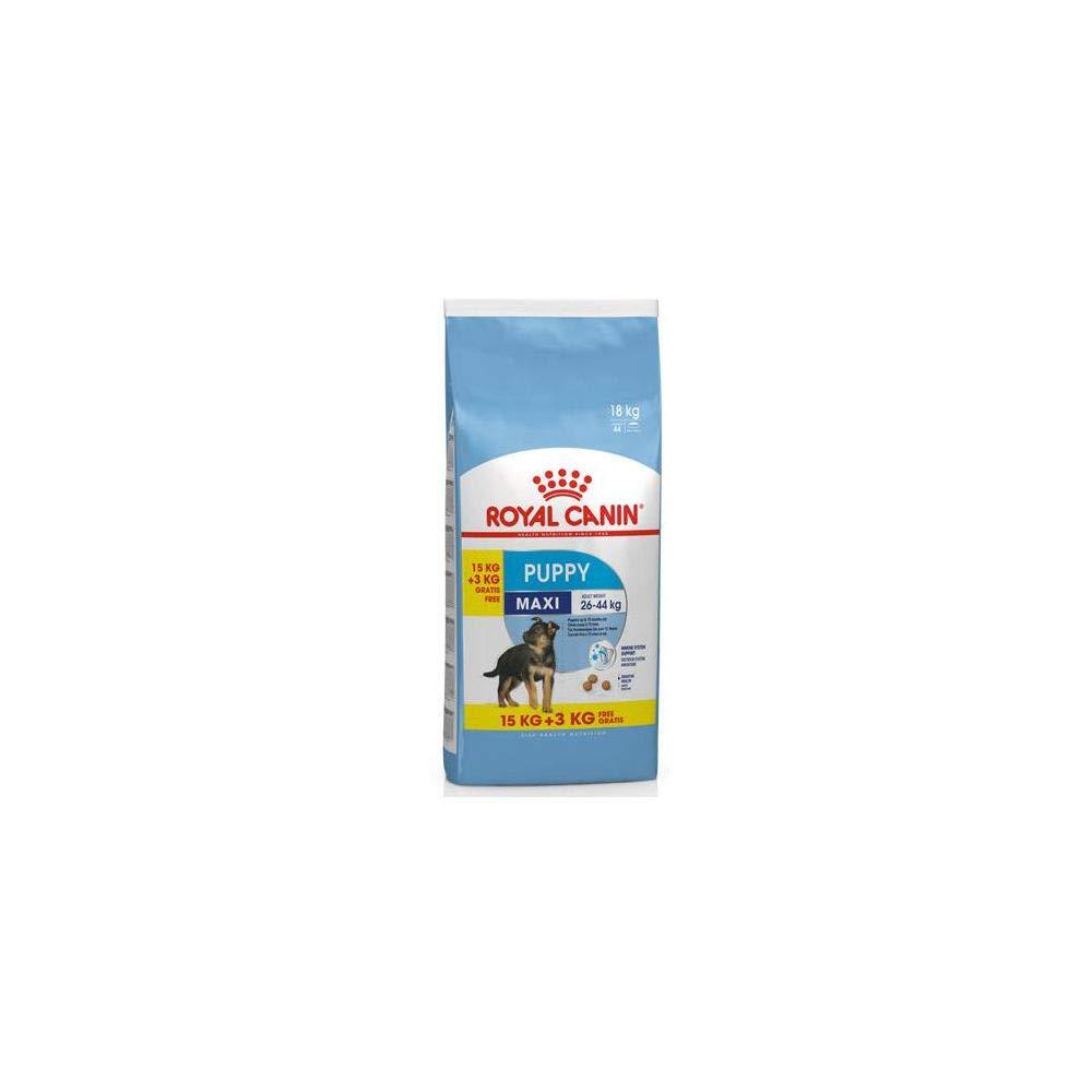 Croquettes chiot Maxi Junior 15KG + 3 KG Gratuits Royal Canin 6570602