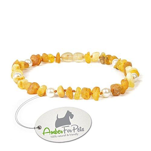 Bernstein Halsband für Hunde - von 20cm bis 60cm - Bernsteinkette Zeckenhalsband Zeckenschutz CGNpWHT28