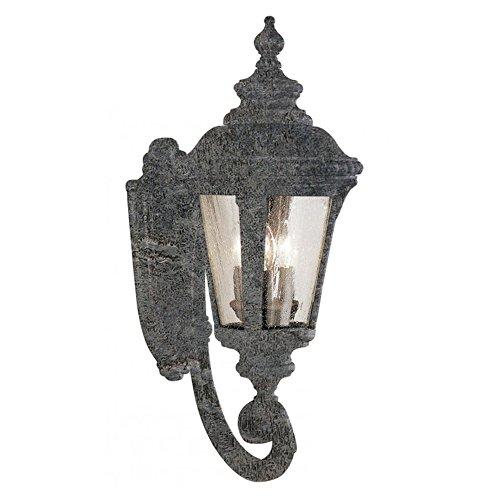 Transglobe Lighting 5041 SWI Outdoor Wall Light with Seeded Glass Shades, Swedish Iron Finished