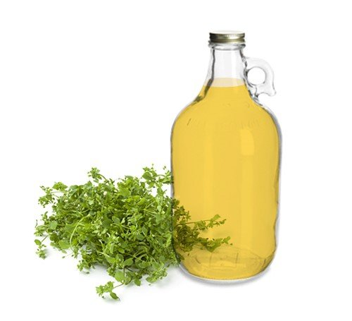 100  Organic Chickweed Medicinal Oil   Bulk  Raw  Herbal Oil   Skin Rashes  Lesions  Skin Irritation Caused By Chemical Metal Allergic Reaction  Soothing  Relief  Made In The Usa 1 Gal
