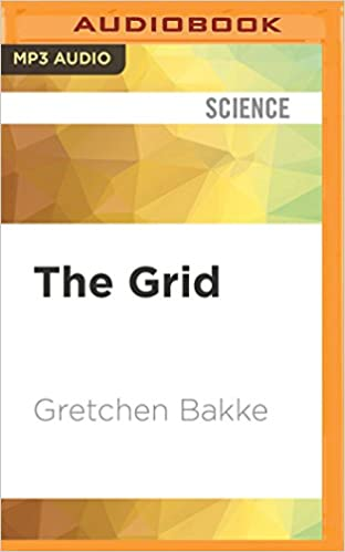 The grid the fraying wires between americans and our energy future the grid the fraying wires between americans and our energy future gretchen bakke emily caudwell 9781536666939 amazon books fandeluxe Image collections