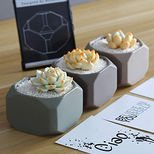 606 Matte - Best Quality - Flower Pots & Planters - Set of 3 Matte Ceramic Succulent Plant Pots Cube Shape Bonsai Planter Flowerpots Cactus Geometric Container - by MANGO. - 1 PCs