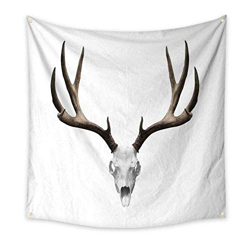 Antlers Decor Funny Tapestry A Deer Skull Skeleton Head Bone Halloween Weathered Hunter Collection Quote Tapestry 47W x 47L Inch -
