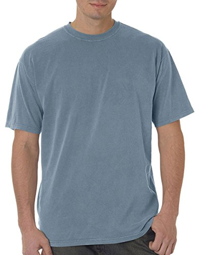 Ice Color (Comfort Colors Garment-Dyed Short Sleeve T-Shirt. C9030 Ice Blue XL)