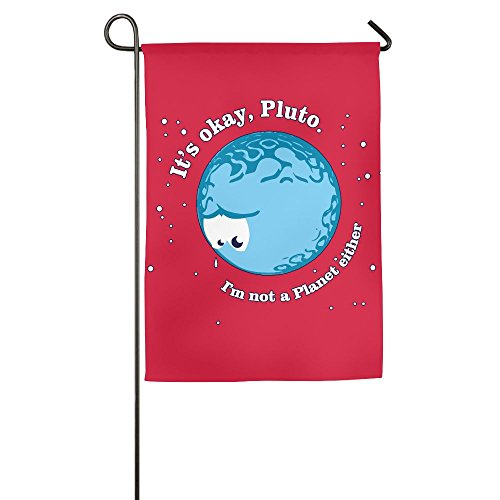 LLiYing-D It'S Okay Pluto Funny Decorative Flag -