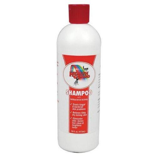 HealthGuard Antibacterial Shampoo 16 Ounce