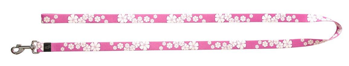 Dogit Style Aloha Small Nylon Leash, 3 8-Inch by 6-Feet, Purple