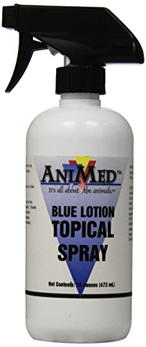 AniMed Blue Lotion Topical Antiseptic for Horses Dogs Cats Cows Sheep and Goats, 16-Ounce