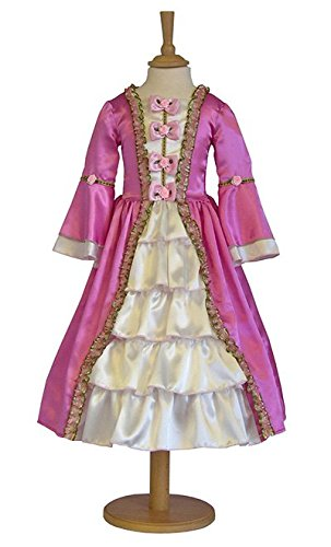 Historical Marie Antoinette Costume - Age 9-11 Years]()