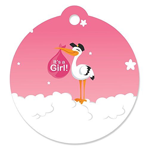 Delivery Stork Gift (Girl Special Delivery - Pink It's A Girl Stork Baby Shower Favor Gift Tags (Set of 20))