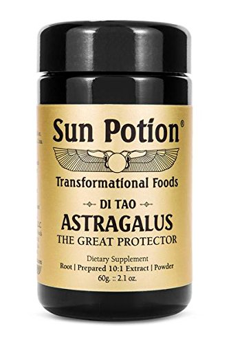 Astragalus Root Powder (Astragalus Root Powder 60g Jar by Sun Potion - Organic, Wildcrafted Herbal Extract Supplement - Potent Qi Tonic - Immune System, Metabolism, and Digestion Support)