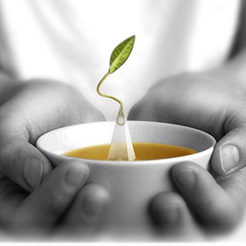Tea Forté BULK PACK Blueberry Merlot Herbal Tea, 48 Handcrafted Pyramid Tea Infusers by Tea Forte (Image #4)