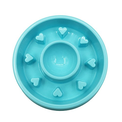 Pet Cuisine Slow Feeder Dog Bowl Anti-Gulping Interactive Puppy Slower Food Feeding Dishes Blue Heart