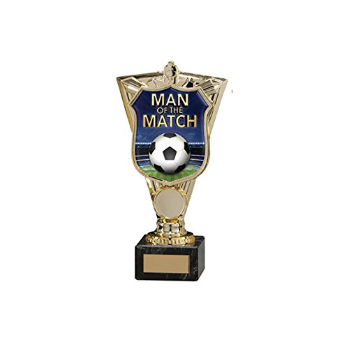 190mm Sporting Titans Football Man of the Match Trophy,Free Engraving (TH15132B) trd