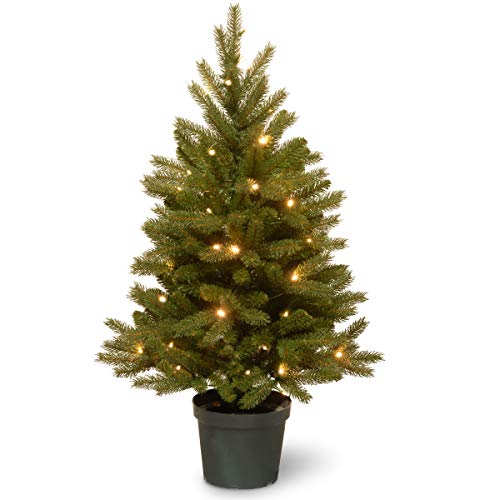 National Tree 3 Foot Feel Real Jersey Frasier Fir Entrance Tree with 35 Warm White Battery Operated LED Lights in Growers Pot (PEJF1-306-30-B)