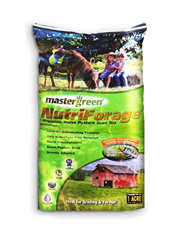DLF 440AS0071UCT179 Horse Pasture Mix Forage 25 Green by DLF (Image #1)