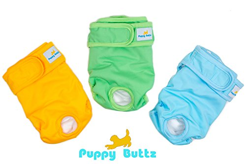 Puppy Buttz Reusable, Washable Dog Diapers, Pack of 3, ()