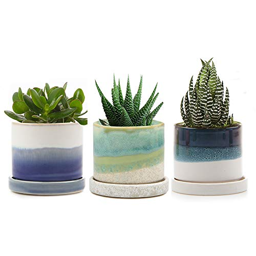 Chive - Set of 3 Succulent Planter 3 Inch Pot with Drainage Hole and Saucer, Small Contemporary Ceramic Pot for Home Decor and Gardening ()