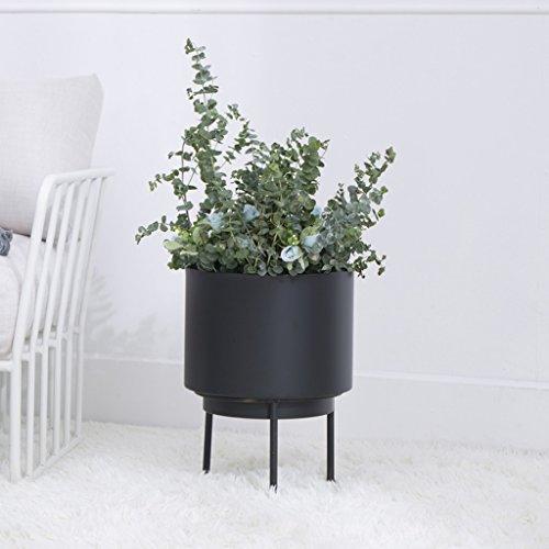 Scandinavian Creative Living Room Interior Floor Iron Crafty Meat Green Roast Velvet Pots Shelf Balcony European Metal Flower Rack ( Color : Black )