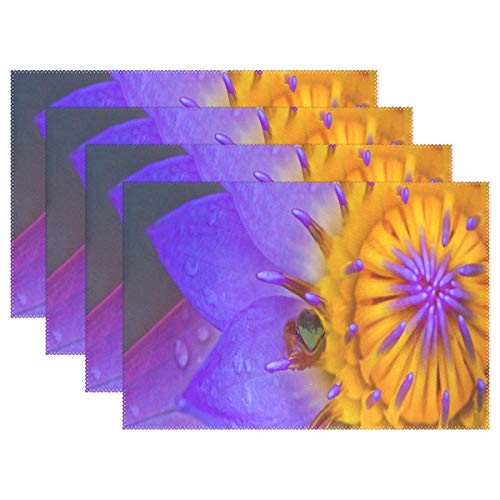 NMCEO Place Mats Fondo De Pantalla Water Lily Frog Personalized Table Mats for Kitchen Dinner Table Washable PVC Non-Slip Insulation 1 Piece]()