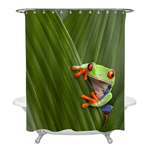 (MitoVilla Red Eye Frog Hidding Behind Foliage Home Decoration, South America Rainforest Monkey Frog Bathroom Shower Curtain, Waterproof Polyester Fabric Bathoom Ornaments for Kids, Green, 72 x 72)