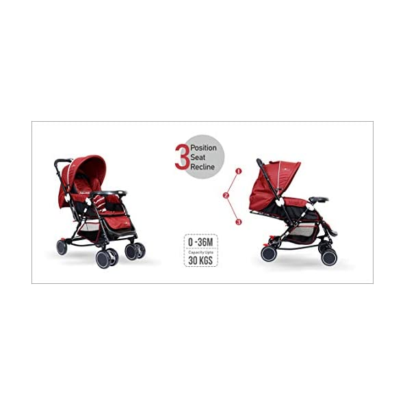 1st Step Baby Rocker Cum Stroller – 3 Point Safety Harness/Reversible Handle Bar/Extended Canopy/Front Swivel Wheels and Back Wheels with Brakes/Storage Basket/ – Red