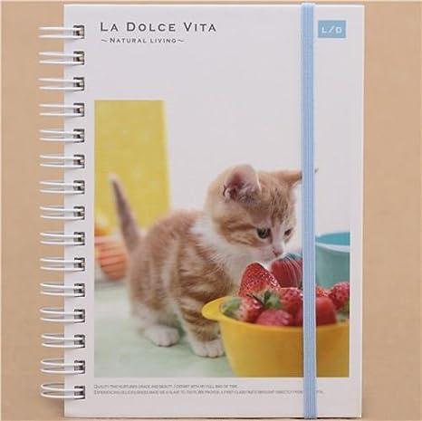 Libreta anillas cachorro gato fresas lindo de Japón: Amazon.es: Juguetes y juegos