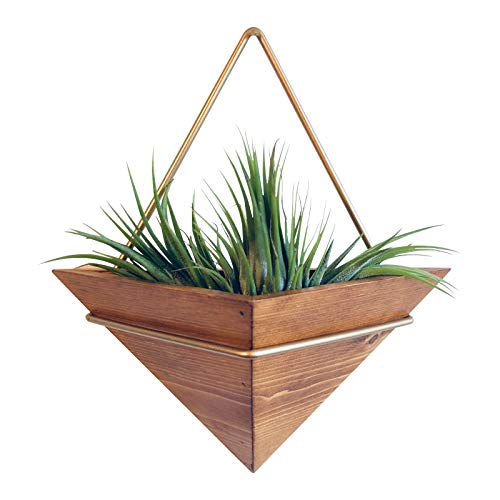 Design Wall Planter - Artisanal Geometric Air Plant Holder - Made From, Sustainably Sourced Wood - Minimalist Style & Easy­To­Hang Design - Ethical Geometric Wall Decor Air Plant
