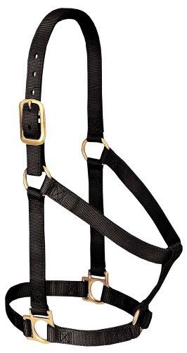 Weaver Leather Basic Non-Adjustable Nylon Horse Halter, Black, 1