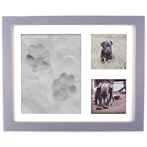 (DII Z02161 Keepsake Frame for Dog, Cat or Other Pet Photos and Paw Wall or Desk-Holds Two 3x3 Images & Clay Included for Imprints, Gray)