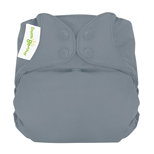 bumGenius Elemental 3.0 All-in-One One-Size Cloth Diaper with Organic Cotton (Armadillo)