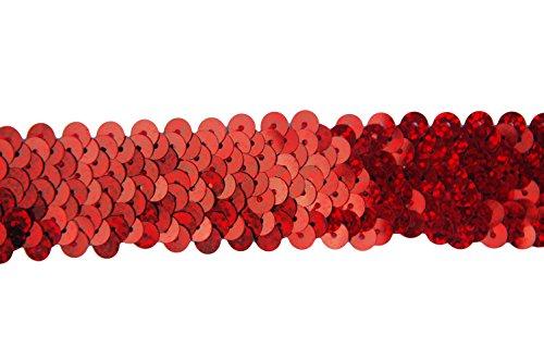 Stretch Sequins Fabric Trim - Stretch Sequin Trim Roll - 1