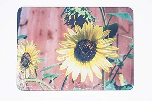 sunflowers against red barn wood