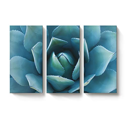 (EZON-CH Large Wall Art Blue Agave Canvas Prints Agave Flower Large Art Canvas Printing 3 Pieces Extra Large Canvas Wall Art Print (12
