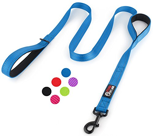 Primal Pet Gear Dog Leash 6ft Long - Traffic Padded Two Handle - Heavy Duty - Double Handles Lead for Control Safety Training - Leashes for Large Dogs or Medium (Dog 12 Month Supply)