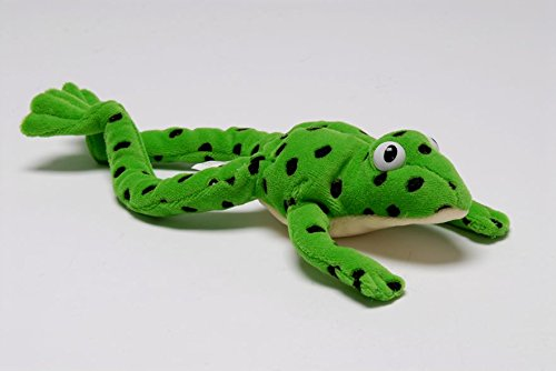 Read Write Inc.: Fred the Frog - Toy (READ WRITE INC PHONICS):  Amazon.co.uk: Miskin, Ruth: 9780199116546: Books