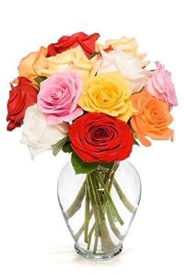 12 Long Stem Assorted Roses