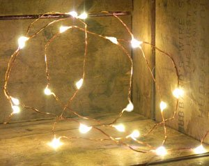 Amazon.com: 20 LED Fairy Lights, 3.8 Ft. Thin Copper Wire, Timer ...:20 LED Fairy Lights, 3.8 Ft. Thin Copper Wire, Timer, Warm White,Lighting