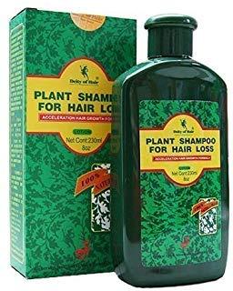 Deity of Hair Plant Shampoo for Hair Loss - Acceleration Hair Growth Formula - 8 Oz (230 Ml) - 1 Bottle ()