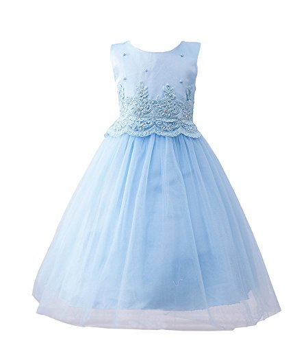 [BabyPreg Little Girls Cinderella Tulle Embroidered Lace Gown Wedding Flower Dress (3, Blue)] (Cinderella Dress For Toddler)